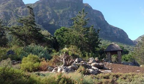 Tales from Capetown #1