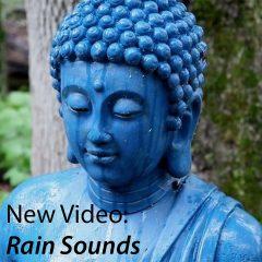 Rain Sounds @ WattleHollow