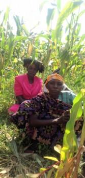 tales5-burial-cornfield