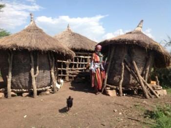 Tanzania mud huts